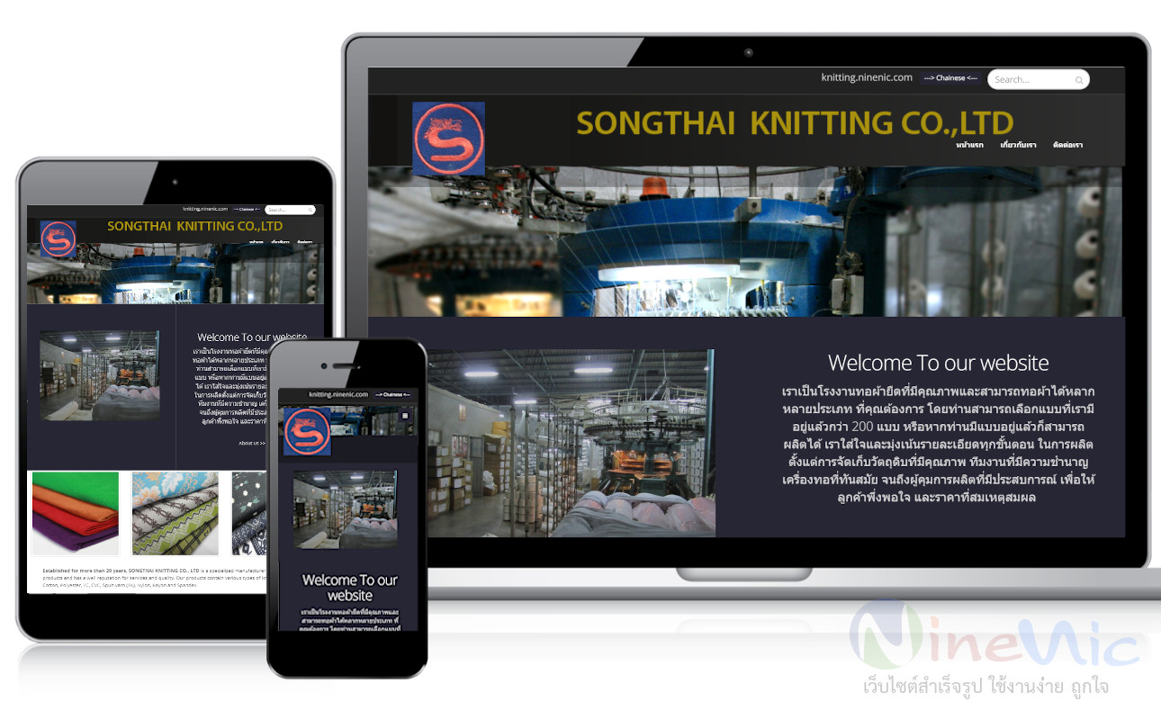 เว็บไซต์สำเร็จรูป ninenic ผลงานออกแบบเว็บไซต์องค์กร - webdesign portfolio