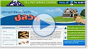 web design : ออกแบบเว็บไซต์ pest